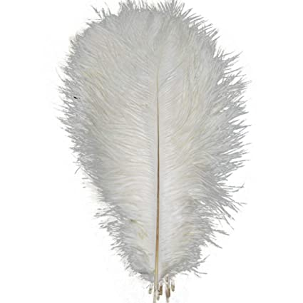 Beige//Champagne  Ostrich Feathers 10-12 inch 12 Pieces USA Seller