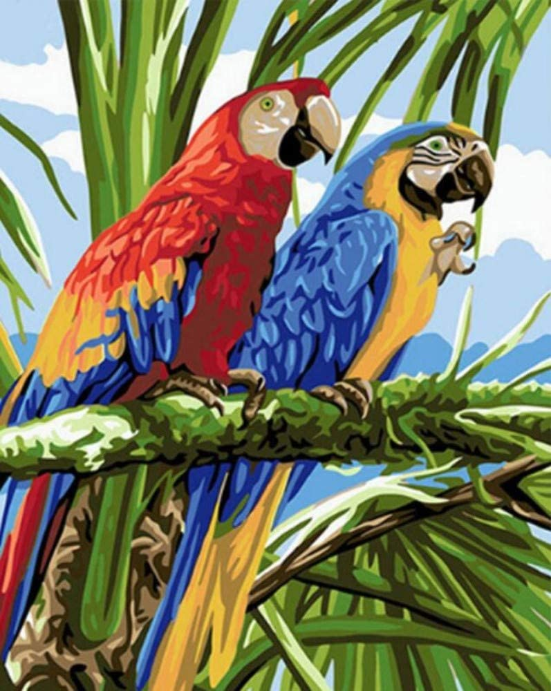 Pintar por Numeros para Adultos Niños Pájaro de rama Pintura por Números con Pinceles y Pinturas DIY Pintura al óleo Decoraciones para el Hogar Regalo (40x50cm, Sin Marco)