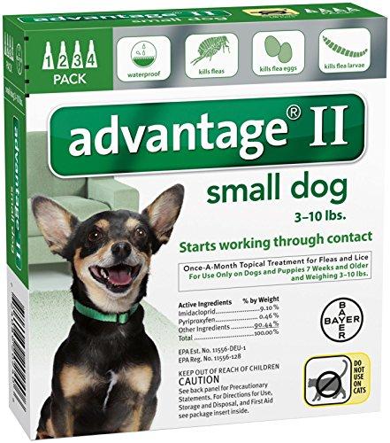 Advantage II Small Dog (Dog Flea Advantage)