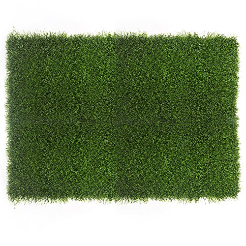 Fasmov Artificial Grass Doormat Multi Purpose Arificial Grass Door Mat, 18