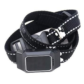 Crewell - Collar localizador de Mascotas con GPS Resistente al Agua, posicionamiento antipérdida, Mini para rastreo de Perros y Gatos: Amazon.es: Hogar
