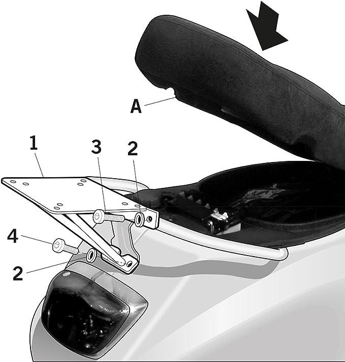 Portaequipajes Shad Lx 125 M44 – 4 del carburador 50 C381 2: Amazon.es: Coche y moto
