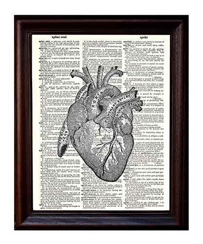 "Anatomical Human Heart - Printed on Upcycled Vintage Dictionary Paper - 8""x11"" Anatomy Art Poster / Print"