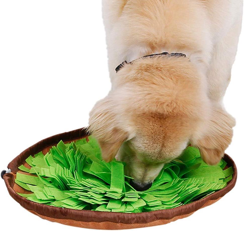 HORYDIA Snuffle Mat para Perros Alfombra Olfativa Perros Alfombrilla de Entrenamiento de Alimentación Lento Lavables a Máquina Plegable Aviliable Suave Durable Juguete Interactivo para Perro.