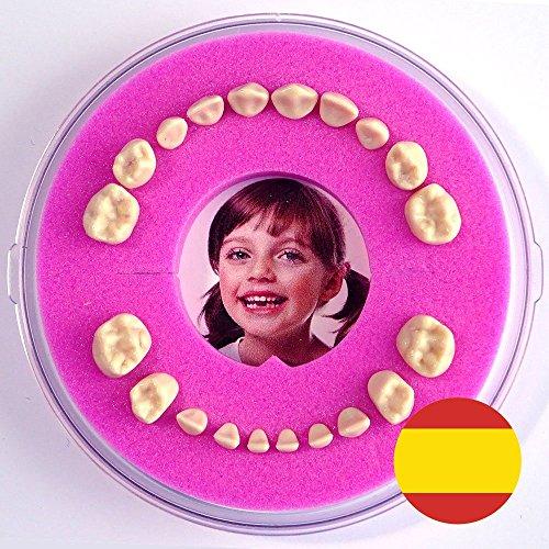 Firsty Cajita para Dientes de leche Round (rosa, chica) ABF Espagnol