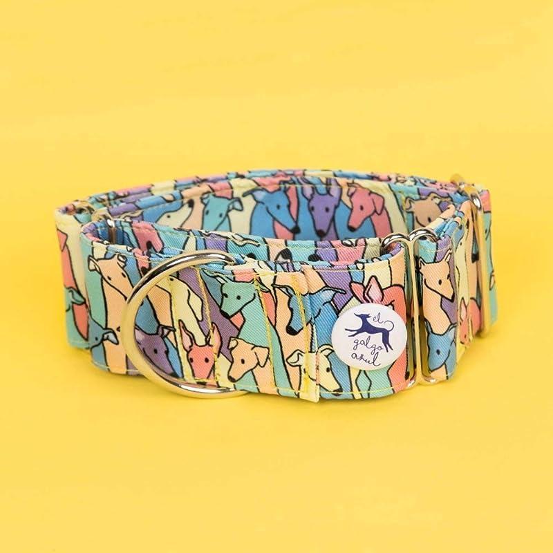 Collar martingale Rainbow: Amazon.es: Handmade