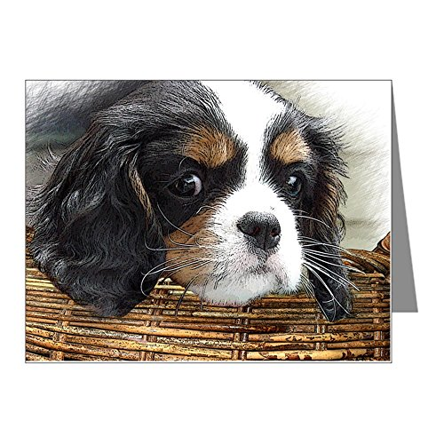 - CafePress - Cavalier King Charles Spanie - Blank Note Cards (Pack of 20) Matte