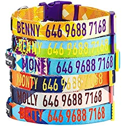 Blueberry Pet 7 Patterns Personalized Dog Collar, Dazzling Yellow Geometric, Small, Adjustable Customized ID Collars for Puppy Embroidered with Pet Name & Phone Number
