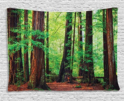 Ambesonne Woodland Tapestry, Redwood Trees Northwest Rain Forest Tropical Scenic Wild Nature Branch, Wide Wall Hanging for Bedroom Living Room Dorm, 80 X 60 , Brown Green