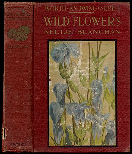 Wild flowers worth knowing (Little nature library)