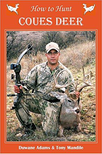 Coues Deer - How to Hunt Coues Deer