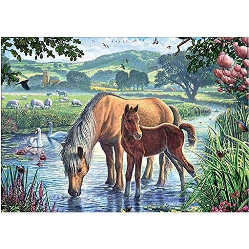 Kaiye DIY 5D Diamond Painting by Number Kit, Full Diamond Horses Rhinestone Embroidery Cross Stitch Arts Craft for Canvas Wall Decor (Horse Art Pic)