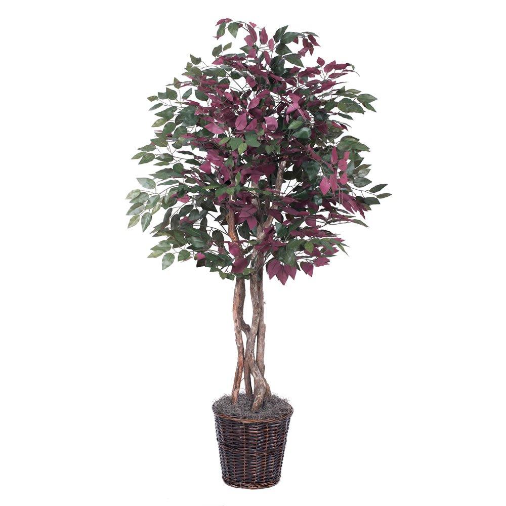 Vickerman TEX0360 Everyday Capensia Tree, 6', Green/Red by Vickerman