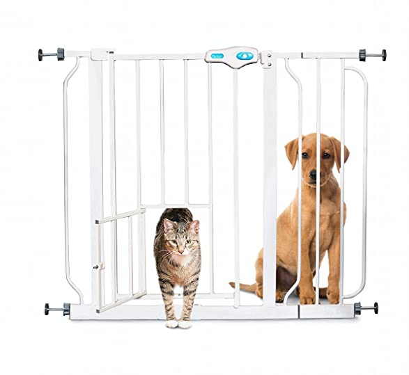 Cat Escape Style Pet Gate Ideal For Homes With Cat And Dogs Hinge - Kitten escapes pet store display to join lonely puppy