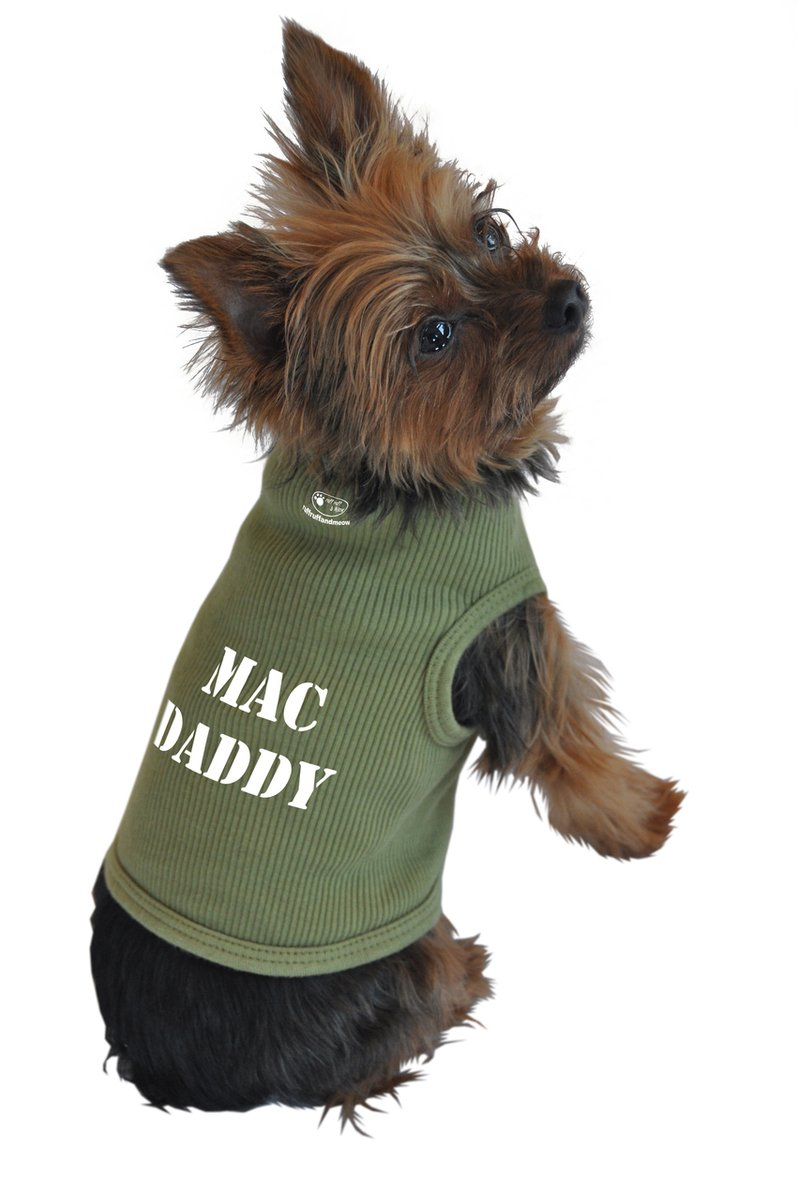 Green Small Green Small Ruff Ruff and Meow Small Doggie Tank Top, Mac Daddy, Green