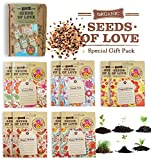 GREETING CARDS SEED PACKETS with greetings printed on the label. SEEDS in each Blessing card, Happy Birthday, Congratulations, Happy Holiday, Designed Box set of 10 MIX FLOWERS GREETING CARDS