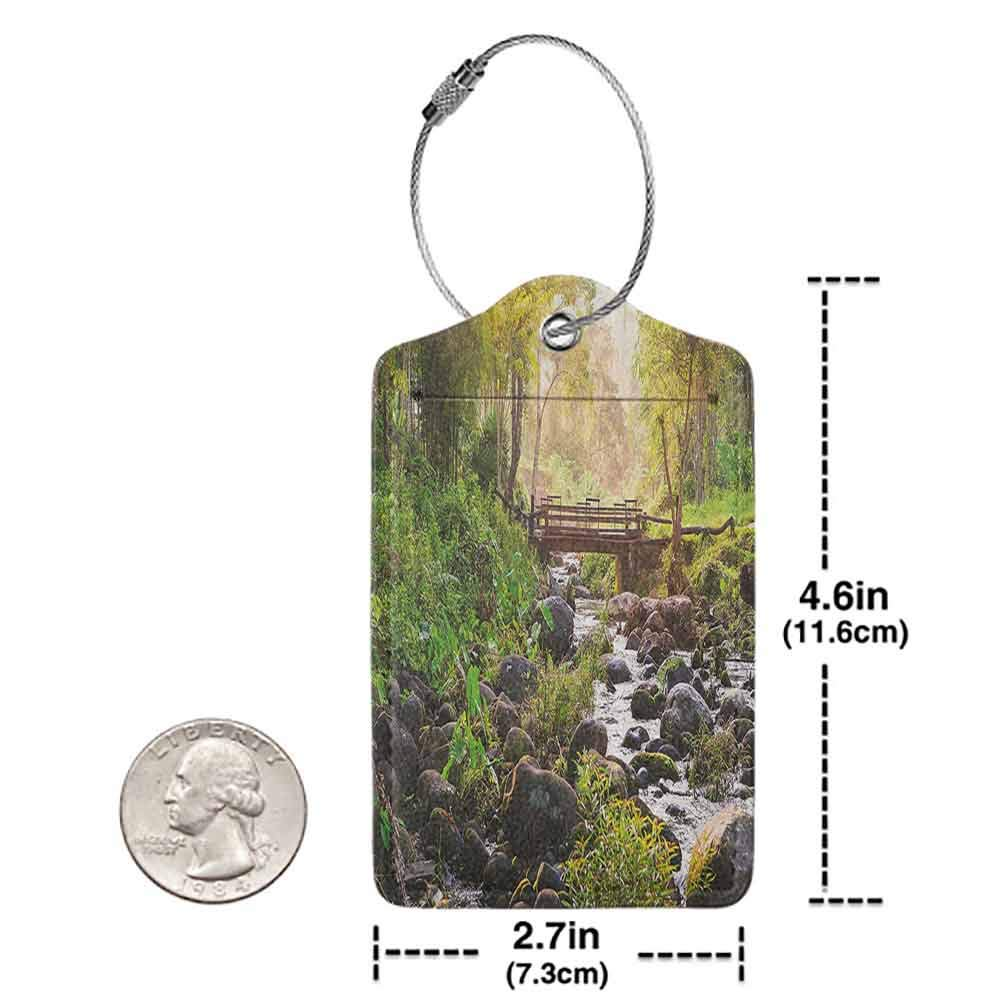 Multicolor luggage tag Landscape Small Waterfall in Deep Forest Thailand Sunlight Morning Nature Scenery Hanging on the suitcase Green Grey Brown W2.7 x L4.6
