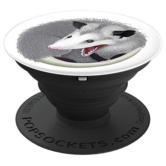 Amazon com: popsocket opossums - PopSockets Grip and Stand
