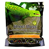 Galapagos 05248 Sheets of Real Moss, 8-Quart, Natural