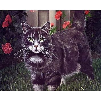 XIAOBAOZISZYH Gato Negro Kit Digital Pintura Digital De Acrílico sobre Lienzo Cuadro De Pared para Regalo De Sala De Estar 40 × 50 Cm: Amazon.es: Hogar