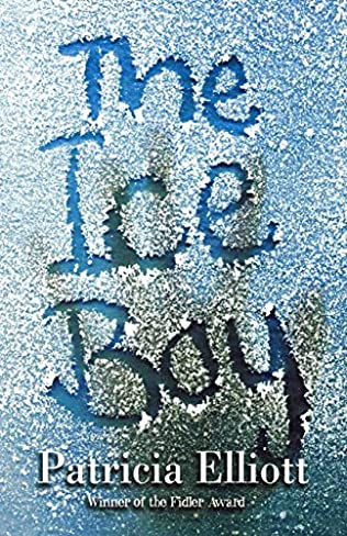 book cover of The Ice Boy