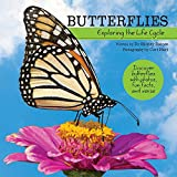 Butterflies: Exploring the Life Cycle (My Wonderful World)