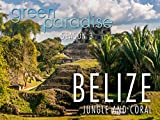 Belize- Jungle and Coral