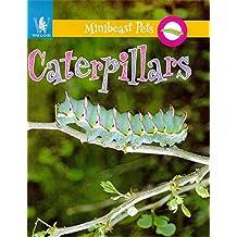 Caterpillars (Minibeast Pets)