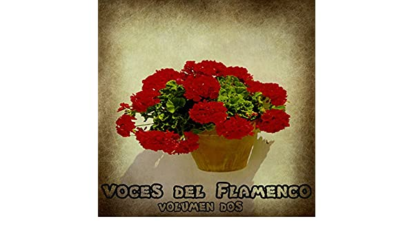 Voces del Flamenco Vol. 2 by Various artists on Amazon Music - Amazon.com