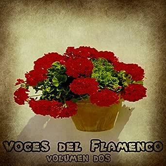 Ventilador Rumba 80 de Ojos De Brujo en Amazon Music - Amazon.es