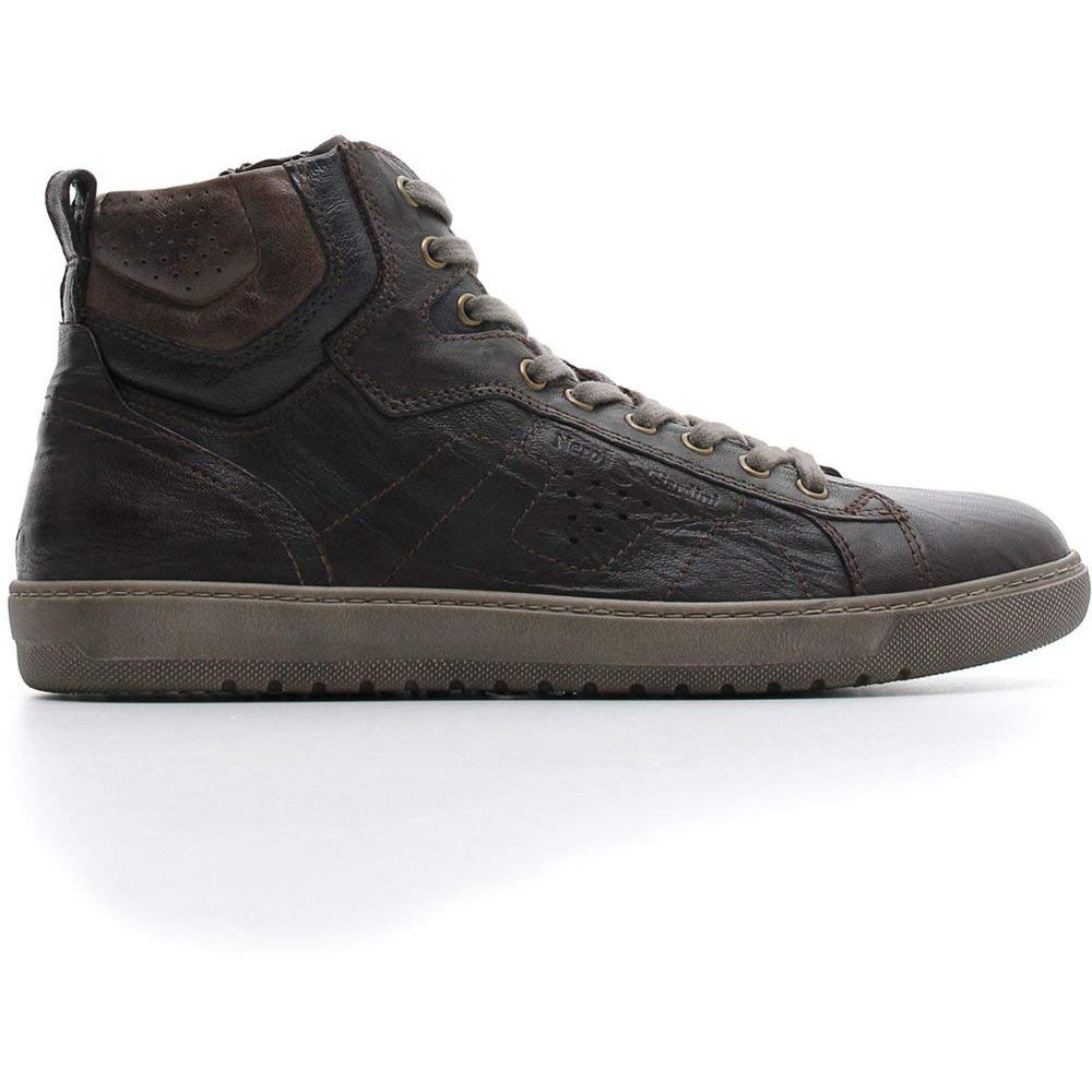 noir noir Giardini , Chaussures de Gymnastique Homme  Achetez maintenant