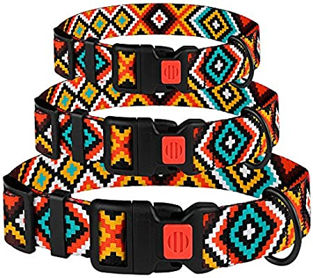 Western /& Reflective Collars for Puppy Small Medium Large Dogs Taglory Unique Designer Soft Dog Collar