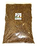 Bulk Dried Mealworms (11 lb.) Approx. 175,000