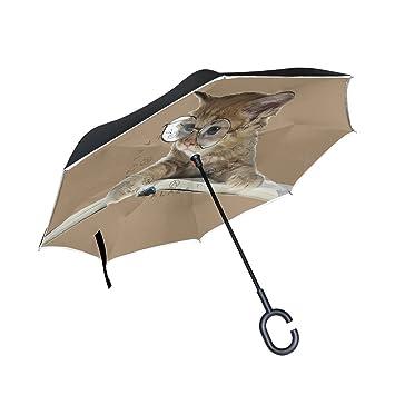 FOLPPLY Paraguas invertido con Gafas de Sol, Doble Capa ...