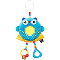 Benbat Dazzle Friends Multi Skills Frog Travel Hanging Toy for Newborn and Above, Multi/Colour
