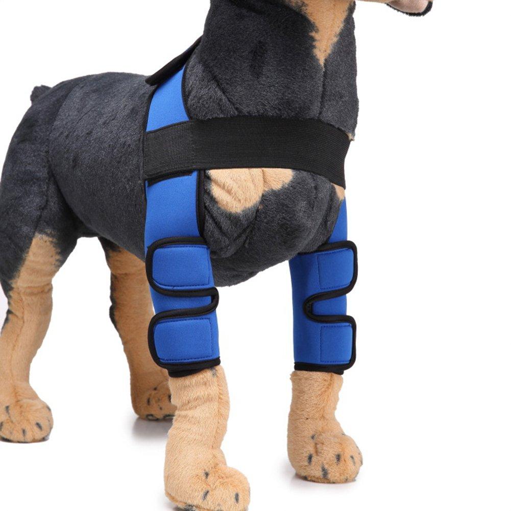 bluee Large bluee Large Dog Brace Rehab Knee Predector Joint Brace Compression Wrap Predect