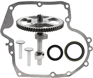 Carbhub 793880 Camshaft for Briggs & Stratton 793583 792681 791942 795102 Camshaft Kit with 697110 Gasket, 795387 Oil Seal