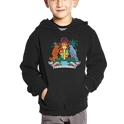 Grenada National Emblem Hoodies For Kids Hooded Sweatshirt Boys Sweater Girls Pullover