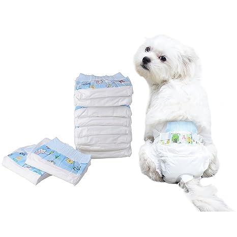 Pañal de papel para perros Pañal desechable Pañal para perros Pañales de entrenamiento Pañales sanitarios Pañales paquetes de 10: Amazon.es: Hogar