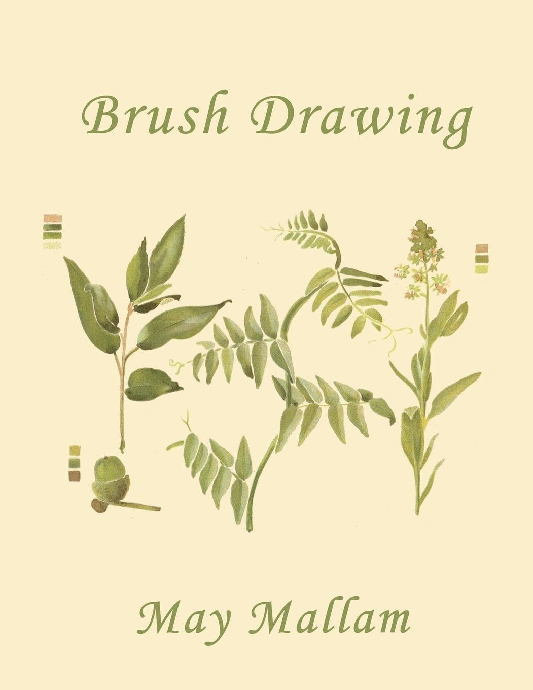 Yesterdays Classics Brush Drawing as Applied to Natural Forms and Common Objects