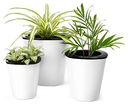 Amazon mkono self watering planters white plastic flower pots mkono self watering planters white plastic flower pots for indoor plant m set of 3 mightylinksfo