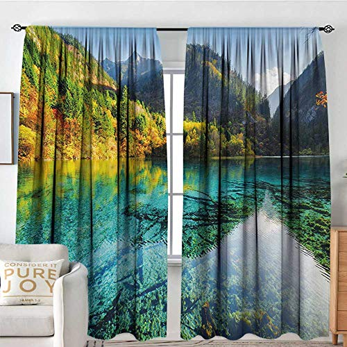 Print Pattern Curtains Nature,Idyllic Mountain Creek Crystal Water Forest Pastoral Rural Landscape,Teal Fern Green Marigold,for Room Darkening Panels for Living Room, Bedroom 84