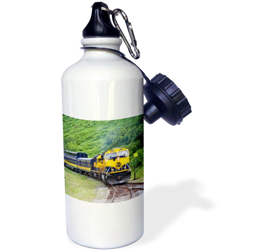 White 3dRose wb/_45613/_1 Alaska Railroad Train Runs Through Beautiful Scenery Between Anchorage and Seward Alaska Sports Water Bottle 21 oz