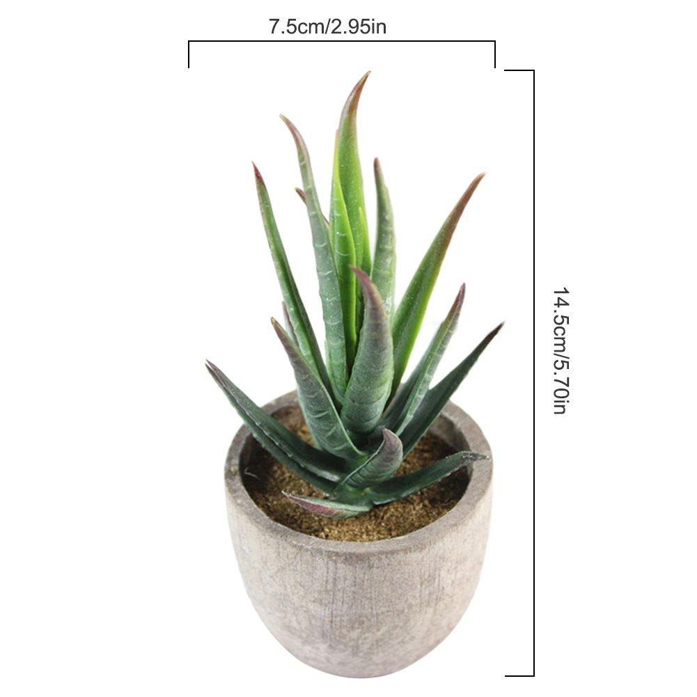 Type A Awhao Pot Plante Succulente Artificielle Minie Plante Grasse Artificielle Bonsa/ï D/écoration Plante Ornement d/'Int/érieur