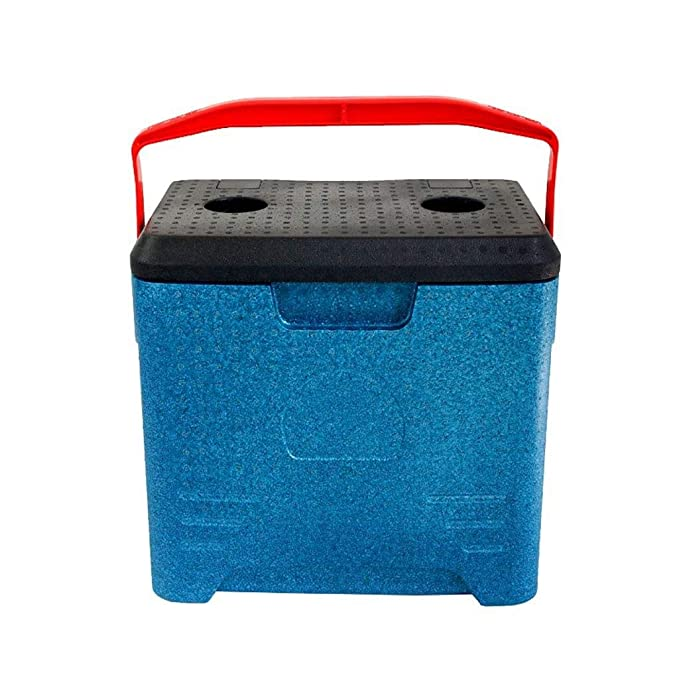 Wyyggnb Cool Box, EPP Foam Box Mini refrigerador y Calentador de ...