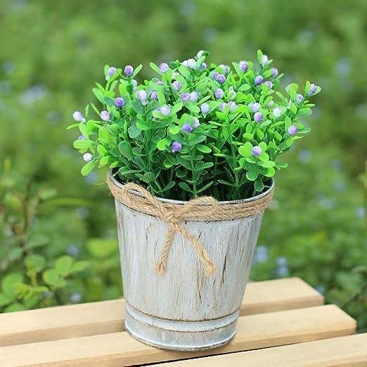 Depory - Maceta de hierro para colgar en el balcón o en el jardín: Amazon.es: Jardín