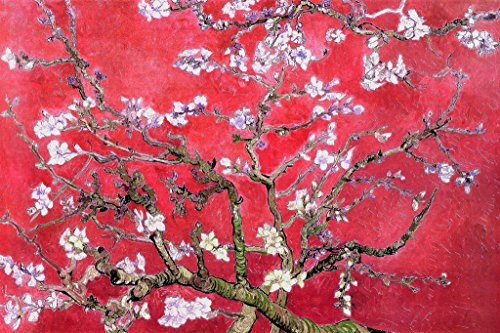 (Vincent Van Gogh Almond Blossom Branches Post Impressionist Painter Painting Red Poster 36x24 inch)