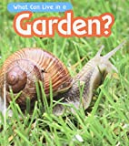 What Can Live in a Garden? (Read and Learn: What Can Live There?)