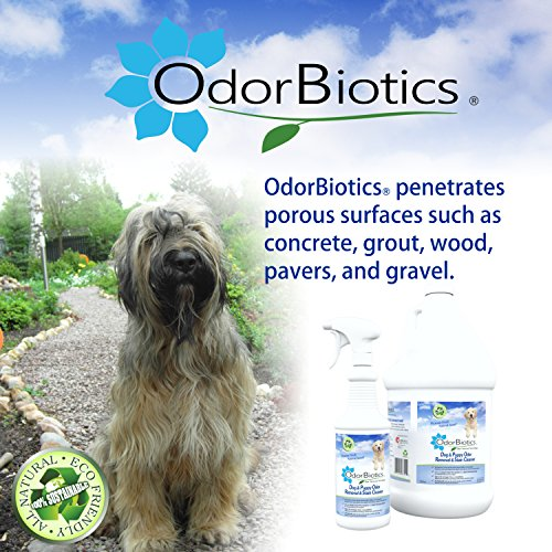 OdorBiotics Pet Stain & Odor Remover for Dog Beds, Playpens, Crates, Carriers, Kennels, Clothes, Puppy Toys, Eliminate Urine Smell on Carpet, Rugs, Hardwood Floors, Sofa Fabric, 128 oz Economy Size by OdorBiotics (Image #4)
