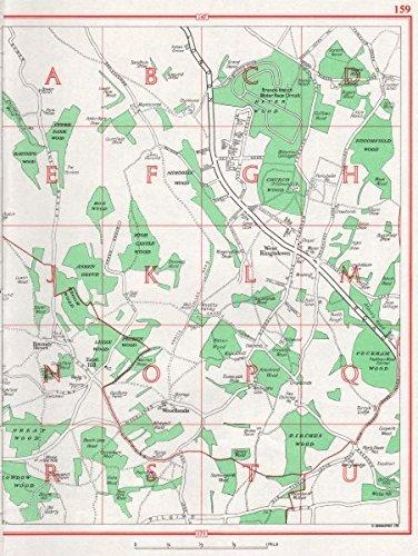 Amazon com: KENT  West Kingsdown Sidehilly Wood Woodlands